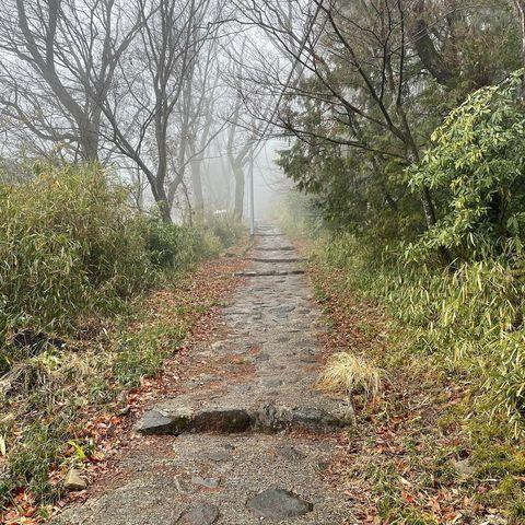 「2021年3月」 「岩谷の滝 大聖院」から宝山寺方面に向かう道中の写真。 雨降りで少し霧が出ていたこともあり、 異世界に迷いこんだような雰囲気に。 ただ嫌...