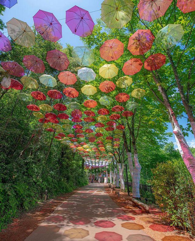 ⠀ 【Japaholic · 琦玉】 MOOMINVALLEY PARK的夏日透明傘裝置藝術umbrella sky又來了 透明的彩色雨傘在陽光透過下超漂亮,夏日...