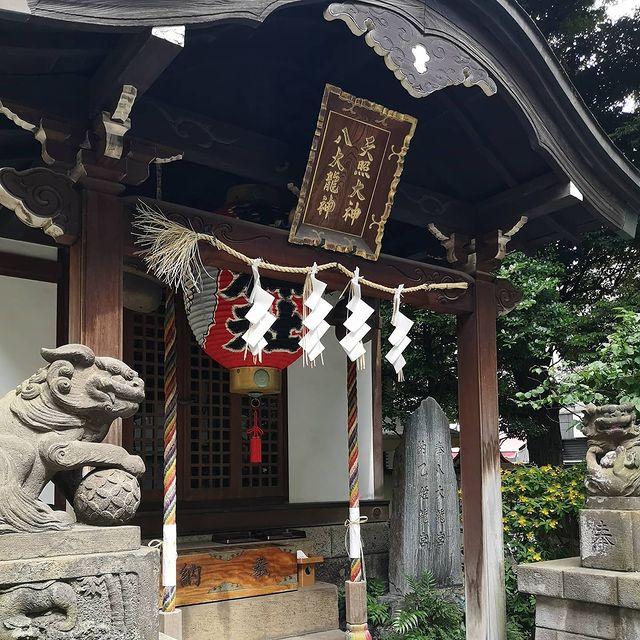#おはよう日本 #おはよう #おはようございまーす #日本の美 #日本の朝 #日本の四季 #日本の初夏 #日本の景色 #日本🇯🇵 #日本旅遊 #日本の風景...