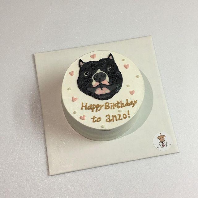 - 5吋 可愛的小狗勾都該擁有自己的版面😻🉑️😻 (訂購蛋糕需一個禮拜前私訊我~) #幾塊蛋糕 #客製蛋糕 #台南甜點 #台南蛋糕 #台南美食 #手作甜點 ...