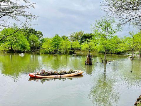 松湖畔的水漾森林。 夢幻的落羽松。 美麗的湖光倒影。 像極了風景明信片。 #迷你版的雲山水 #台灣 #台灣景點 #台灣旅遊 #台灣旅行 #台灣風景 #花...