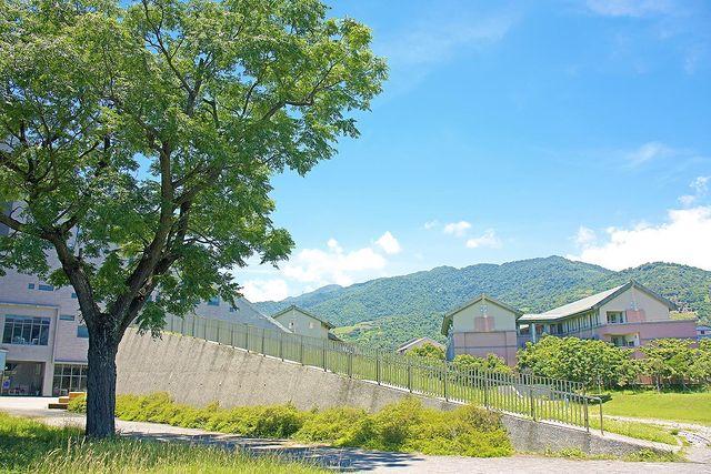 - Okay👌 tw_wheretogo taiwan_tw520 taiwan_tourism #canoncamera 📷 #m6markii #微單攝...