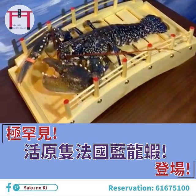 極罕見 活法國藍龍蝦 法國藍龍被譽為龍蝦中的貴族,特徵係有兩個大大隻的鉗,成長期亦比起其他的龍蝦慢好多,而藍色係因為基因變異,相當稀有,肉質富彈性。 要食就要...