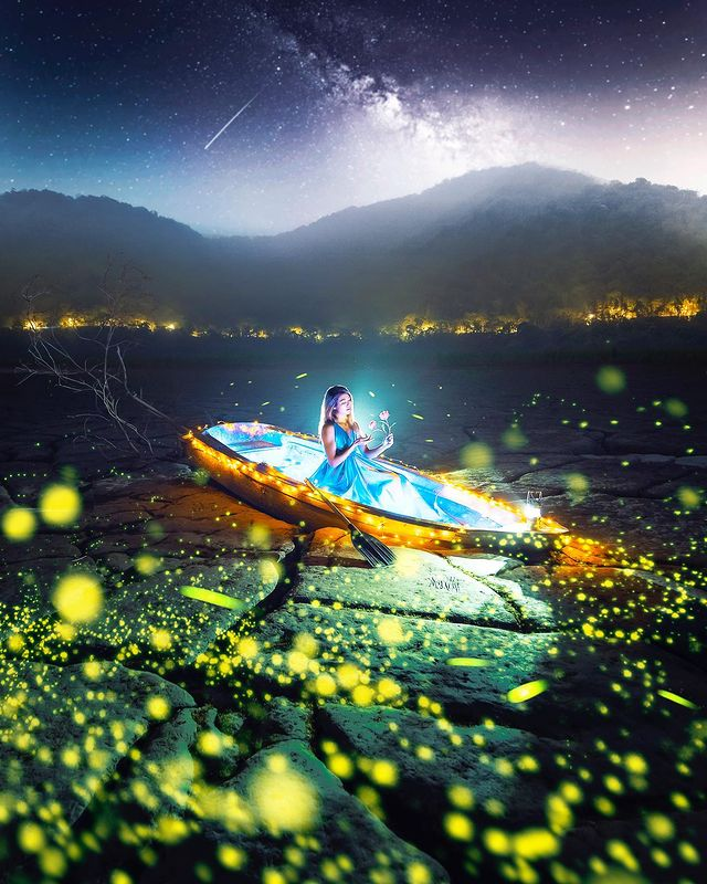 ✨It's firefly season✨ This is by far the most extravagant & magical photo I have...
