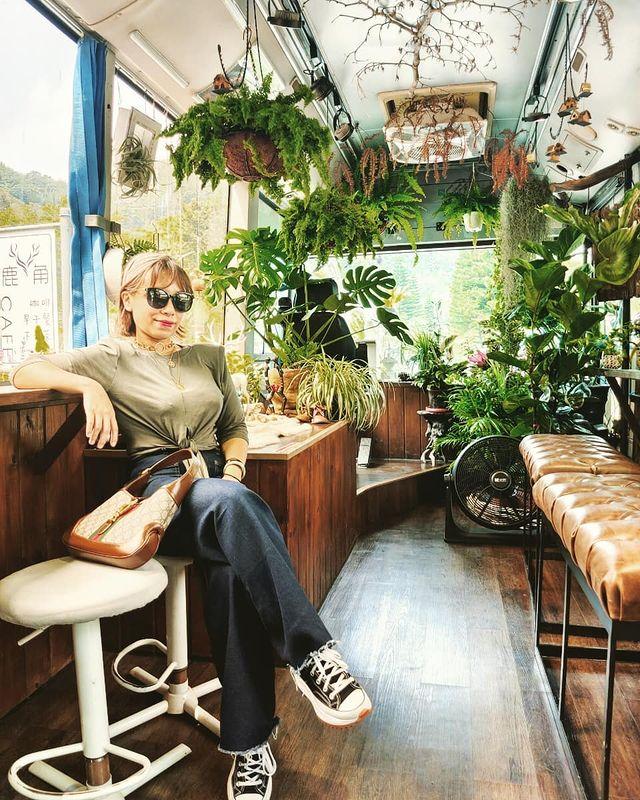 好想把滿是綠植的鹿角咖啡整台公車開回家!多肉植物鹿角蕨長的真好但我是植物殺手啊😭😭😭....無法大肆採購!用眼睛觀賞用心感受就滿足!🥰🥰💚💚💚💚💚💚💚💚💚💚💚💚 ...